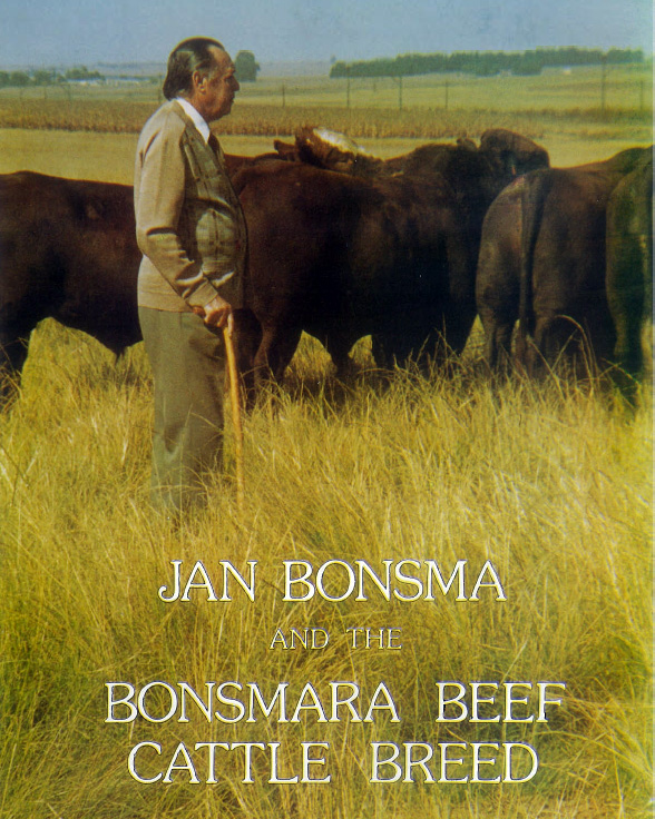 jan bonsma